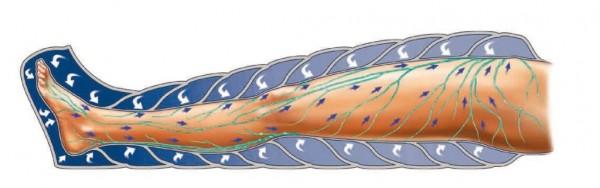 Ce este drenajul limfatic